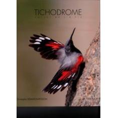 Tichodrome - Follet de l'à-pic
