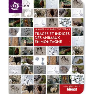 Mosaïque traces et indices