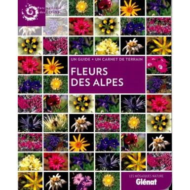 Mosaïque Fleurs des Alpes